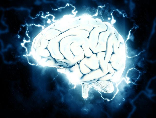 男性脳と女性脳の違いを理解する